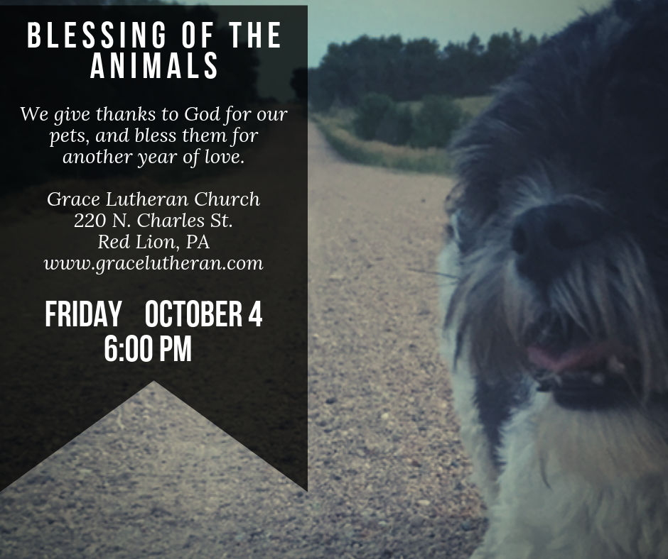 Blessing of the Animals @ Grace Lutheran (Red Lion)