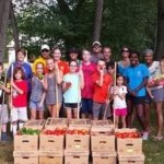 Growing Project at Wittel Farm